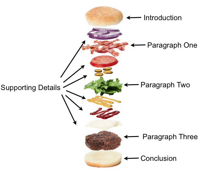 burger diagram essay The five-paragraph essay is a format of essay having five paragraphs: one introductory paragraph, three body paragraphs with support and development, and one.