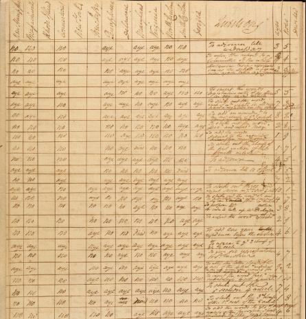 constitution votes