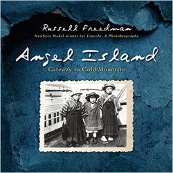 angel island book cover